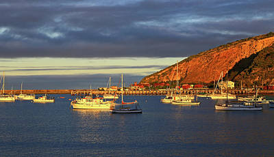 Poster featuring the photograph Winter Afternoon Sun At Friendly Bay by Nareeta Martin