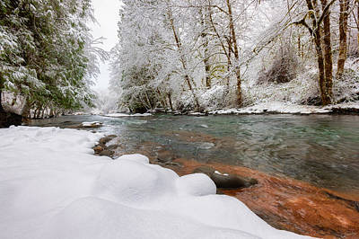 Winter Along Scoggins Creek  Poster