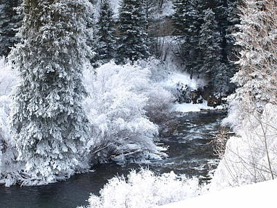 Winter Along The Creek Poster by DeeLon Merritt