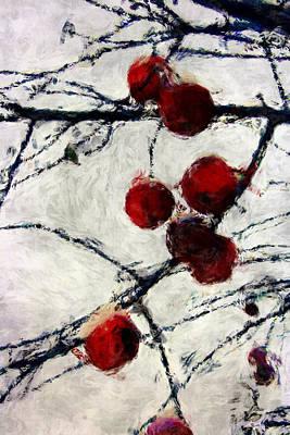 Winter Berries 2 Poster by Julie Lueders