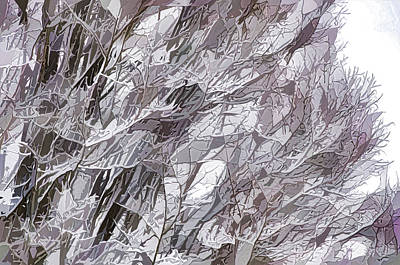 Winter Branches 1 Poster