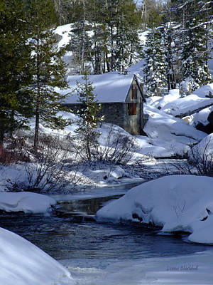 Winter Cottage Poster by Donna Blackhall