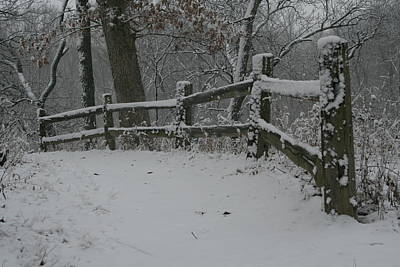 Winter Fence Trail H Poster