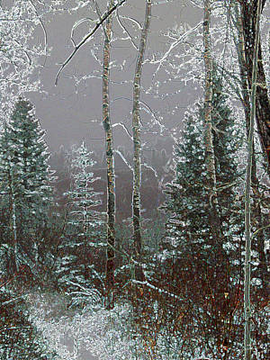 Poster featuring the digital art Winter Fog by Stuart Turnbull