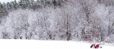 Winter Harvest Poster