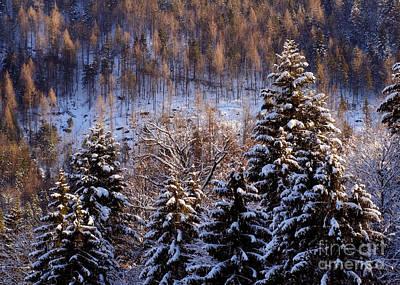 winter in Bavaria 8 Poster by Rudi Prott