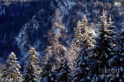 winter in Bavaria 9 Poster by Rudi Prott