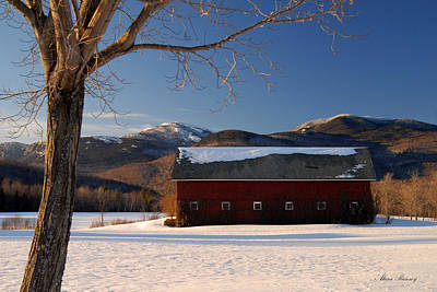 Poster featuring the photograph Winter In New England by Alana Ranney