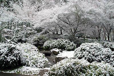 Winter In The Japanese Garden Poster by Jim Nelson
