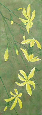 Winter Jasmine Poster by Barbara Moignard