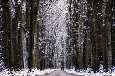 Winter Lane Poster by Martin Podt