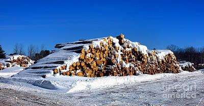 Winter Logs Poster