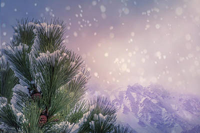 Winter Mountain Scene With Snow Falling  Poster by Art Spectrum