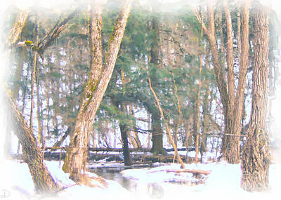 Poster featuring the photograph Winter Oasis by Debi Dmytryshyn