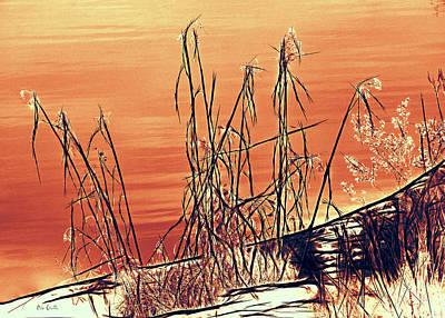 Winter Orange Poster by Bob Orsillo