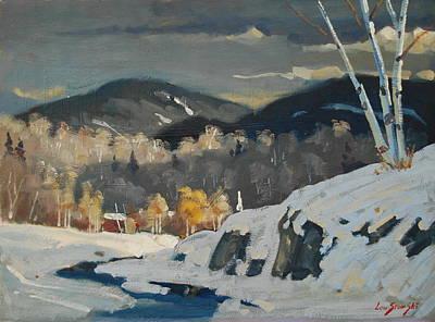 Winter Patterns Poster by Len Stomski