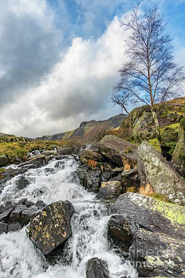 Winter Rapids Of Snowdonia Poster by Adrian Evans