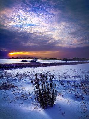 Winter Rising Poster by Phil Koch