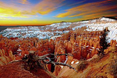 Winter Sunrise At Bryce Poster