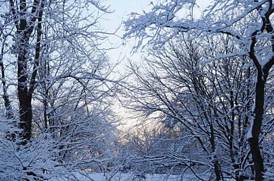 Winter Sunrise Poster by Dimitri Meimaris
