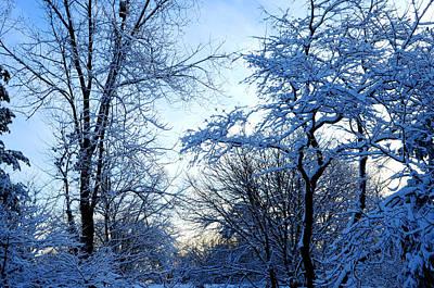 Winter Sunrise II Poster by Dimitri Meimaris