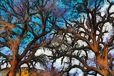 Poster featuring the photograph Winter Trees At Fort Tejon Lebec California Abstract by Floyd Snyder