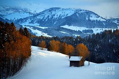 Winter Wonderland In Switzerland - Sunset Light In The Trees Poster