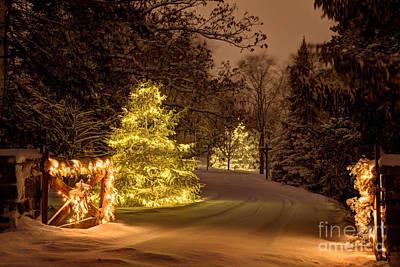 Winter Wonderland Minnesota Poster by Wayne Moran