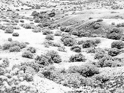 Wintry Day In The High Mountain Desert Poster
