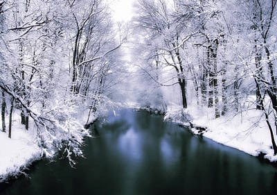 Wintry White Poster