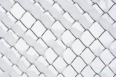 Wire Netting In Winter Poster