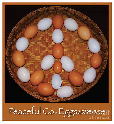 Wish For Peaceful Co-eggistence  Poster by Marcus Dagan and Bruce Fox