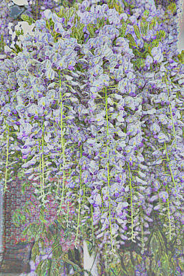 Poster featuring the photograph Wisteria Before The Hail by Nareeta Martin