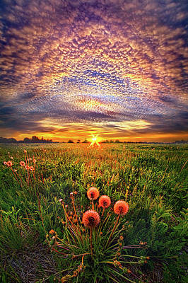 Poster featuring the photograph With Gratitude by Phil Koch