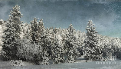 With Love - Winter  Poster by Beve Brown-Clark Photography