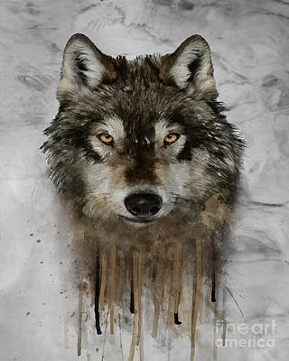 Wolf Drip Painting Poster