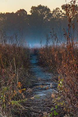 Wolf Road Prairie Trail Poster by Steve Gadomski