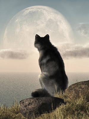 Wolf Watching The Moonrise Poster