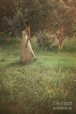 Woman In Olive Orchard Poster by Mythja Photography
