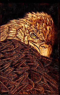Wood Burning Eagle Looking Back Poster