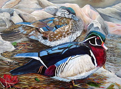 Wood Ducks  Poster by Marilyn  McNish