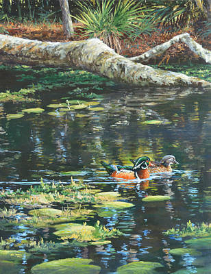 Wood Ducks On The Water Poster by Jim Young