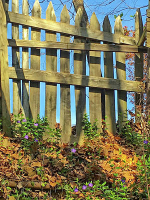 Wood Fence Poster by Susan Leggett