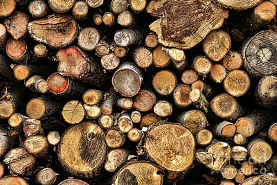 Wood Log Stack Number 144 Poster