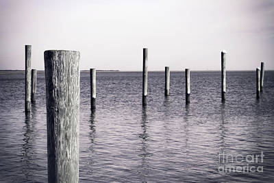 Poster featuring the photograph Wood Pilings In Monotone by Colleen Kammerer