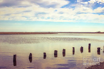 Poster featuring the photograph Wood Pilings In Still Water by Colleen Kammerer