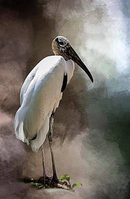 Wood Stork Poster by Cyndy Doty