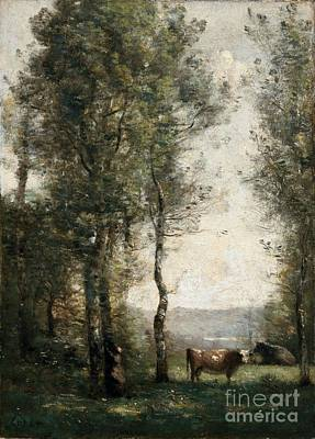 Wooded Landscape With Cows Poster by MotionAge Designs