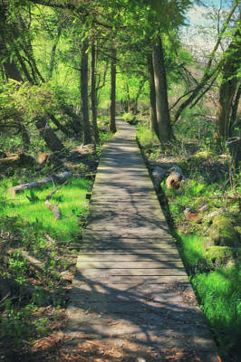 Wooded Path - Spring At Retzer Nature Center Poster by Jennifer Rondinelli Reilly - Fine Art Photography