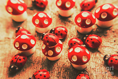 Wooden Bugs And Plastic Toadstools Poster